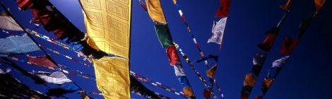 Rassegna settimanale 8-14 febbraio: Cina
