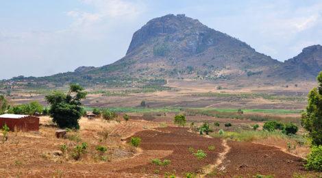 Rassegna settimanale 8-14 marzo: Africa sub-sahariana