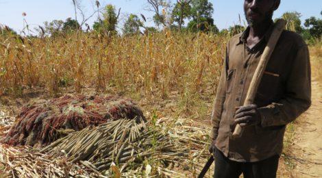 Rassegna settimanale 22-25 aprile: Africa Subsahariana
