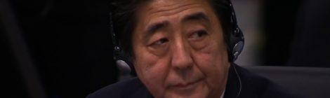 Rassegna settimanale 10 - 16 novembre: Giappone e Corea del Sud
