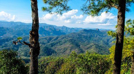 Rassegna settimanale 4-10 maggio: Sud Est Asiatico