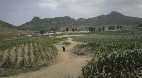 Rassegna settimanale 12-18 ottobre: Cina e Corea del Nord