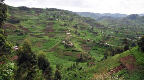 Rassegna settimanale 9-15 maggio: Africa Subsahariana