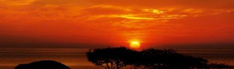 Rassegna settimanale 30 maggio- 5 giugno: Africa Subsahariana