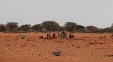 Rassegna settimanale 13-19 marzo: Africa Sub-sahariana