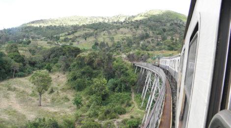 Rassegna settimanale 29 maggio-4 giugno: Africa sub-sahariana