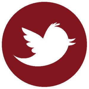 twitter-icon-orizzontinternazionali
