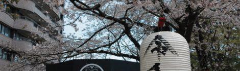 Rassegna settimanale 1-7 aprile 2019: Giappone e Corea del Sud