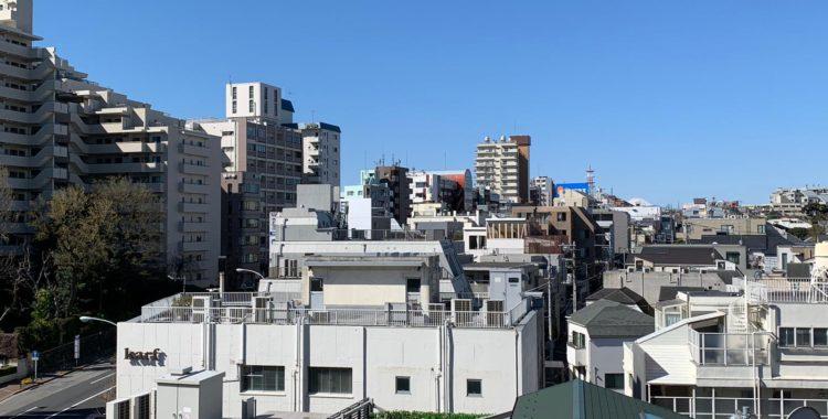 tokyo-view-fuji-interview-coronavirus